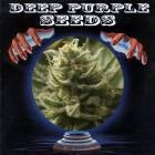 Deep Purple Seeds