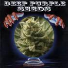 Deep Purple Seeds