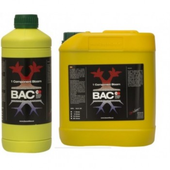 BAC One Component Bloom