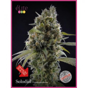 Elite Seeds Solodiol CBD...