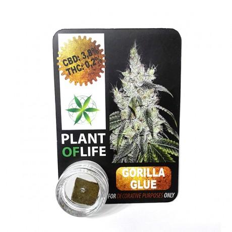 copy of CBD Polen Plant of Life 22% Amnesia Haze