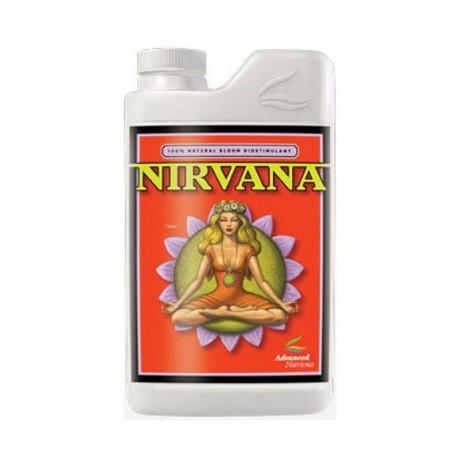 Advanced Nirvana