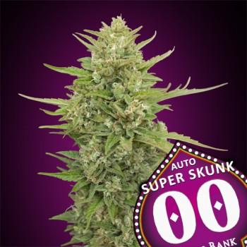 00 Seeds Super Skunk Auto...
