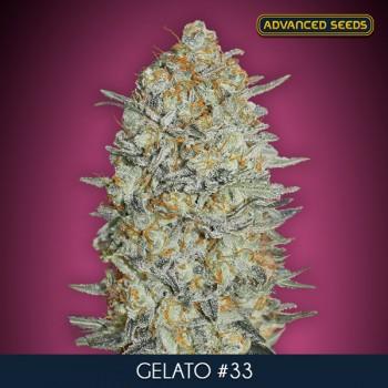 Advanced Gelato 33 Auto...