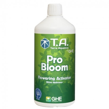 GHE Pro Bloom