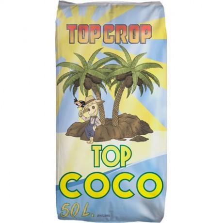 Top Crop Top Coco 50 Lit.